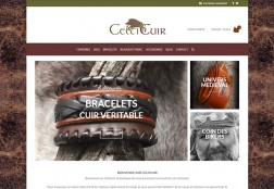 Site web Celticuir.fr